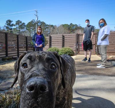 Animal_Hospital_Biscoe_Outdoor_Area_Dog_Closeup