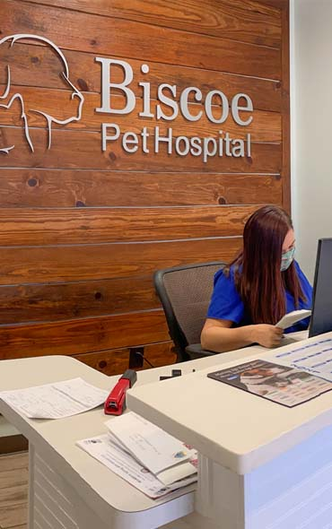 Biscoe Animal Hospital About US